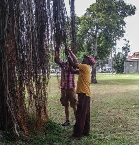 Cinnamon Garden - Colombo (11)_edited
